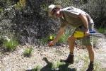 03_04-21-12 Spring Fox Hunt