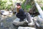 06_04-21-12 Spring Fox Hunt