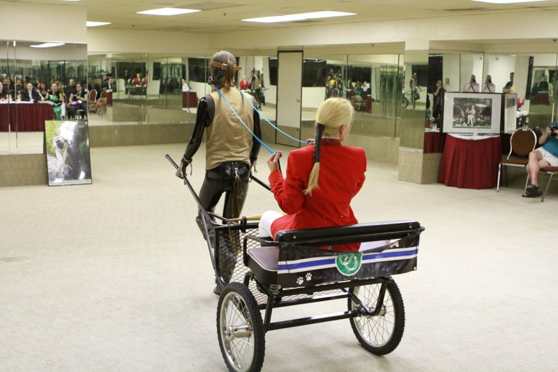 Speckle Cart Play img_2331