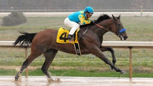 031715 Horses American Pharoah Pi Mp.vresize.1200.675.high.39